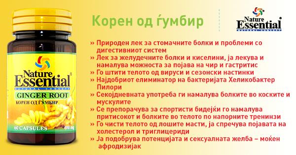 koren-od-gjumbir