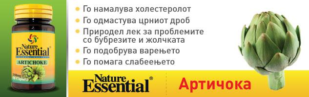 Banner Inside Post – Top – 633×200 – Artichoke